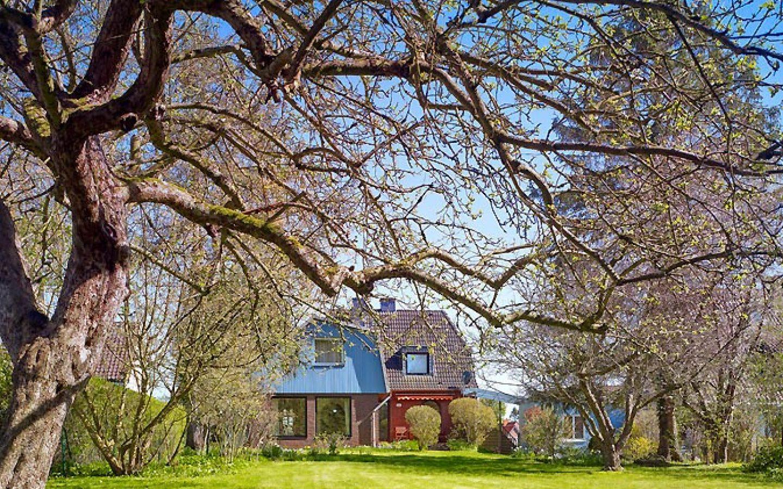 cropped-Haus-hinten-vom-Garten-mit-Baum.jpg